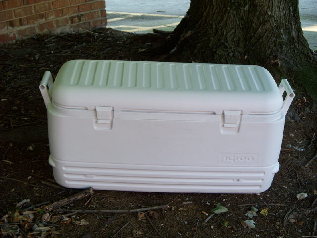 Where to find COOLER 150QT in Mt. Airy