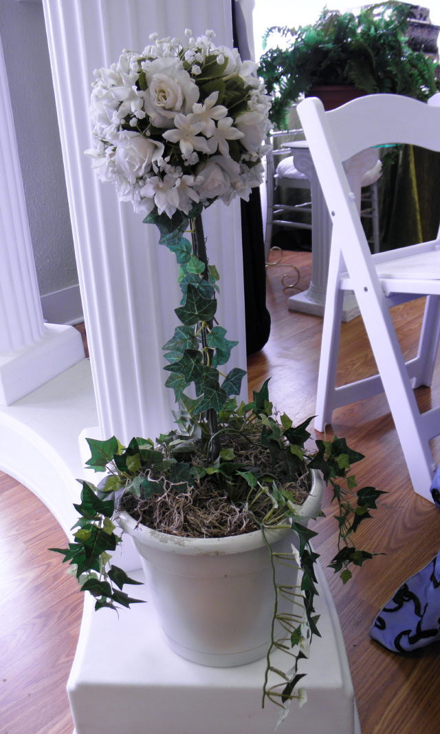 Where to find FLORAL TOPIARY WHITE in Mt. Airy