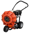 Where to rent LEAF BLOWER 8HP in Mt. Airy NC