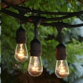 Where to rent 48  BLACK CAFE LIGHTS W  EDISON BULBS in Mt. Airy NC