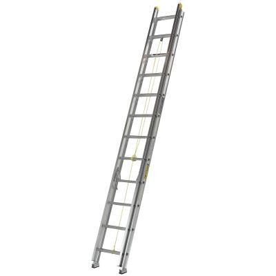 Where to find 24  EXTENSION LADDER in Mt. Airy