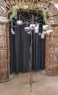 Rental store for WIRE VOTIVE TREE 7  TALL in Mt. Airy NC